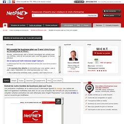 Modèle de business plan sur 3 ans (kit complet) NetPME