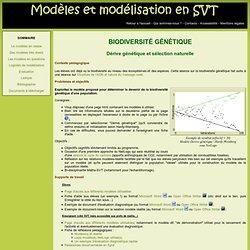 Modèles et modélisation en SVT : Biodiversité génétique (dérive génétique et sélection naturelle)