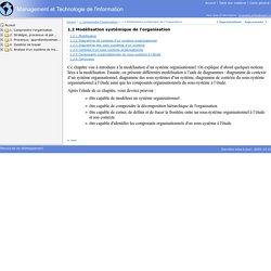Modélisation systémique de l'organisation