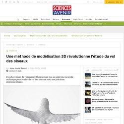 Une méthode de modélisation 3D révolutionne l'étude du vol des oiseaux