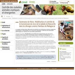CIRAD 17/06/14 Soutenance de thèse : Modélisation et contrôle de la transmission du virus de la maladie de Newcastle dans les élevages aviaires familiaux de Madagascar