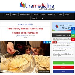 'Modern day Mendel' Modernizing Sesame Seed Production - The Media Line