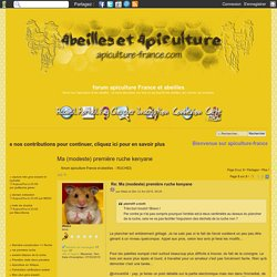 Ma (modeste) première ruche kenyane - Page 3