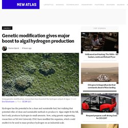 Genetic modification gives major boost to algal hydrogen production