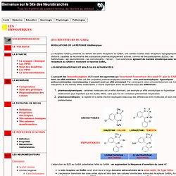 modulations de la réponse GABA-A : les benzodiazépines
