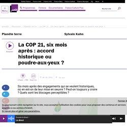 La COP 21, six mois après : accord historique ou poudre-aux-yeux ?