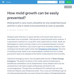 How mold growth can be easily prevented?