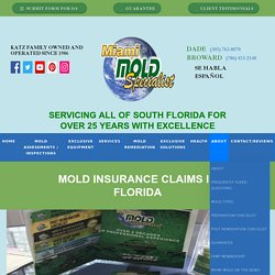 Mold Insurance Claims in Florida
