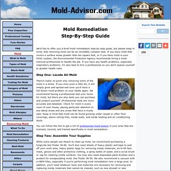 Mold Remediation Step-By-Step Guide