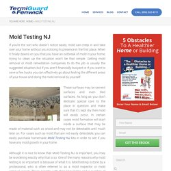 Mold Testing NJ