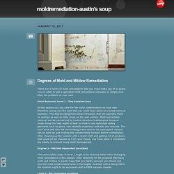 moldremediation-austin's soup