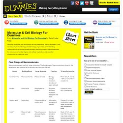 Molecular & Cell Biology For Dummies Cheat Sheet