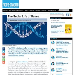 The Social Life of Genes: Shaping Your Molecular Composition