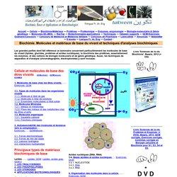 Molécules de base. Glucides, lipides, protéines,acides nucléiques