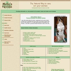 Molly's Herbals - Natural Care for Animals