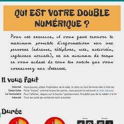 Mon double numérique : enquête sur son identité numérique