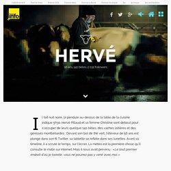 Mon veau s'appelle hashtag - Hervé