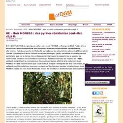 UE - Maïs MON810 : des pyrales résistantes peut-être déjà là
