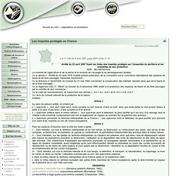 Les insectes protégés en France