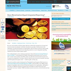 Does Monetization Equal Integrated Reporting?