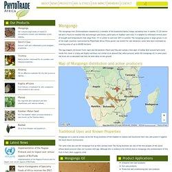 Mongongo - PhytoTrade Africa PhytoTrade Africa