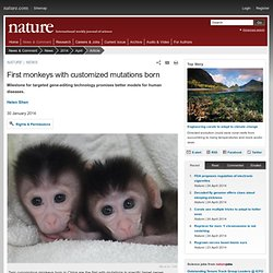 First monkeys with customized mutations born