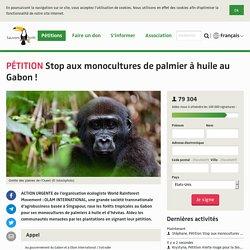 Stop aux monocultures de palmier à huile au Gabon!