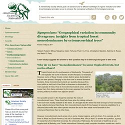 """- """"Geographical variation in community divergence: insights from tropical forest monodominance by ectomycorrhizal trees"""""""