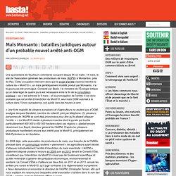 Maïs Monsanto : batailles juridiques autour d'un probable nouvel arrêté anti-OGM