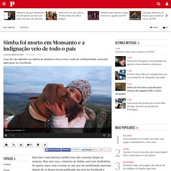 Simba foi morto em Monsanto e a indignação veio de todo o país