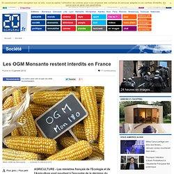 Les OGM Monsanto restent interdits en France
