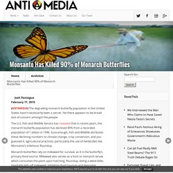 Monsanto Has Killed 90% of Monarch Butterflies