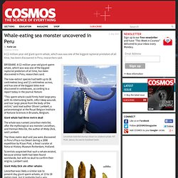 Whale-eating sea monster uncovered in Peru