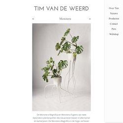 Tim van de Weerd, Monstera
