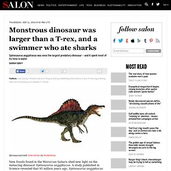 Monstrous dinosaur was larger than a T-rex, and a swimmer who ate sharks