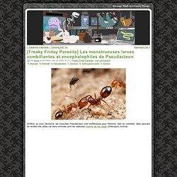 [Freaky Friday Parasite] Les monstrueuses larves zombifiantes et encephalophiles de Pseudacteon
