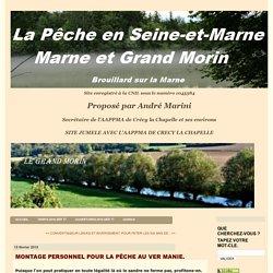 MONTAGE PERSONNEL POUR LA PÊCHE AU VER MANIE. - La pêche en Seine-et-Marne, Marne et Grand Morin
