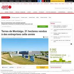 Terres de Montaigu. 21 hectares vendus à des entreprises cette année
