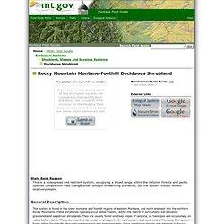 Montana Field Guide