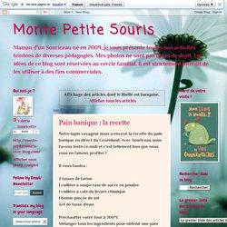 Monte Petite Souris: banquise