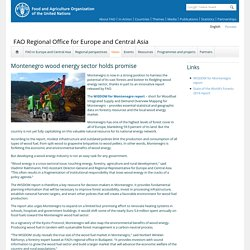 FAO 12/11/14 Montenegro wood energy sector holds promise