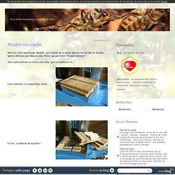 Monter une ruche - les abeilles de Lifou
