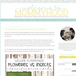 Welcome to Mommyhood: Free Montessori classification cards: insects vs flowers