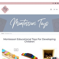Montessori Educational Toys For Toddlers