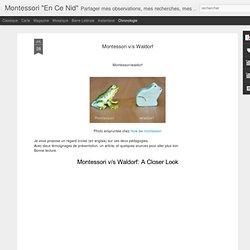 Montessori v/s Waldorf