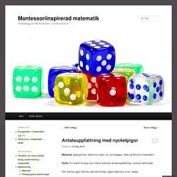 matteblogg på Mårtenskolan i Lunds kommun