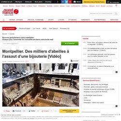 Montpellier. Des milliers d'abeilles à l'assaut d'une bijouterie [Vidéo]