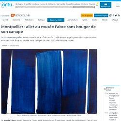 Montpellier : aller au musée Fabre sans bouger de son canapé