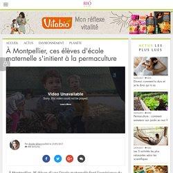 À Montpellier, ces élèves d'école maternelle s'initient à la permaculture