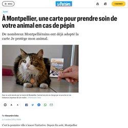 À Montpellier, une carte pour prendre soin de votre animal en cas de pépin